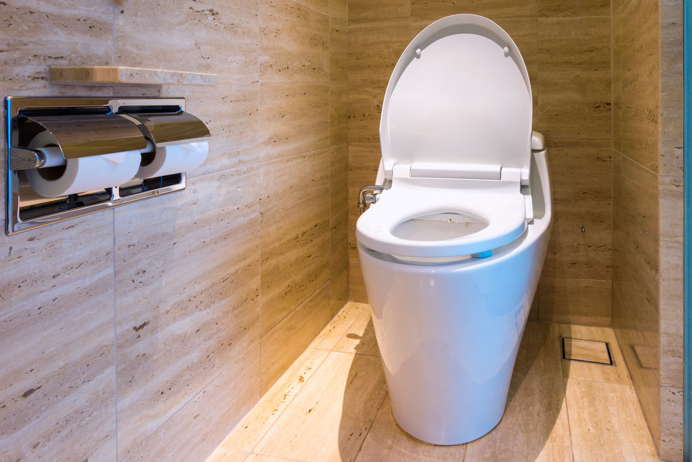 łazienka z toaletą samoczyszczącą